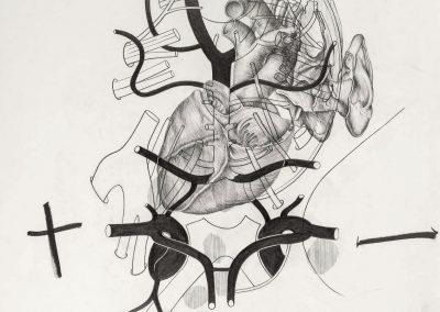 TOMAK_Netz_2021_Ausstellung_Galerie Frank Wien