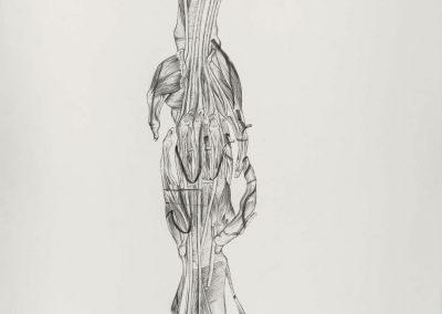 TOMAK_Zwiekraft_2021_Ausstellung_Galerie Frank Wien